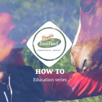 Pryde's EasiFeed - What Are Gastric Ulcers with Camilla from Optim Equine