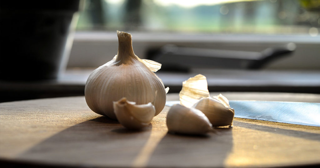 Garlic-The-Suitability-and-Use-in-Horses-Optim-Equine