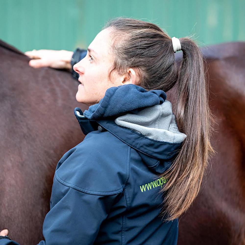 Consultation & Comprehensive Treatment Optim Equine