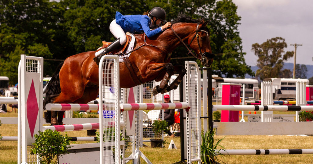 Why-Can-such-an-Average-Horse-Achieve-at-the-Highest-Level